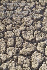 Stock Photo of Parched Soil