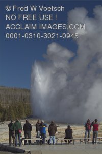 Stock Photo of Old Faithful Geyser