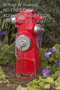 Stock Photo of Red Fire Hydrant