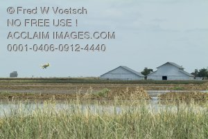 Stock Photo of a Crop Duster Biplane Above Some Crops