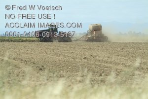 Stock Photo of a Tractor in a Field of Crops
