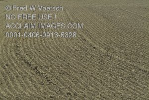Stock Photo of a Freshly Tilled Piece of Land