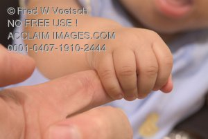 Stock Photo of a Baby Grasping a Finger