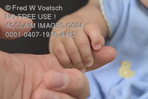 Stock Photo of a Baby Gripping a Finger