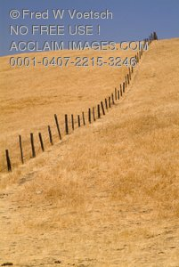 Stock Photo of a Fence on a Dry Landscape