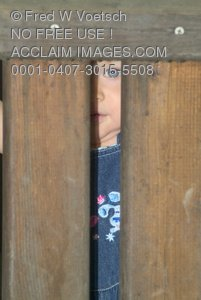 Stock Photo of a Girl With Blue Eyes Peeking Through Two Wooden Boards