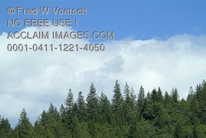 Stock Photos of Mountains, Trees and Clouds