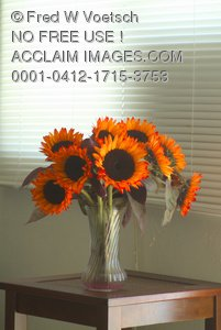 Clip Art Stock Photo of a Vase of Sunflowers