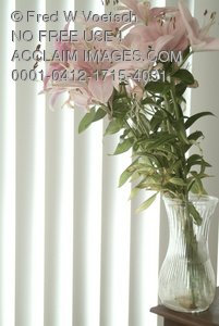 Clip Art Stock Photo of Lilies In a Vase