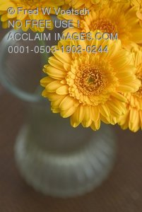 Flowers in Vase Art Print and Photo
