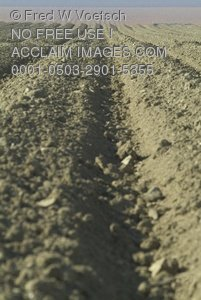 Clip Art Stock Photo of Plowed Rows in a Field