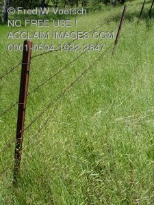 Barbed Wire Fence Stock Photograph