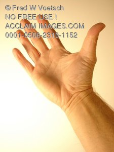 Clip Art Stock Photo of Palm Side of Hand