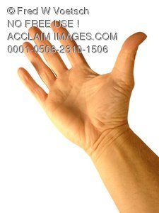 Clip Art Stock Photo of Human Palm and Hand - Photo Object