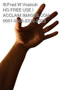 Clip Art Stock Photo of a Hand Reaching Up - Photo Object