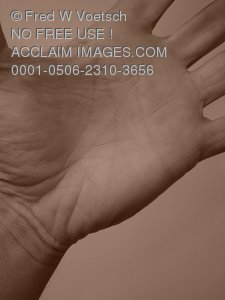 Clip Art Stock Photo of a Persons Palm