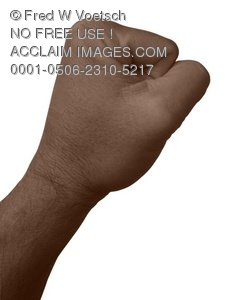 Stock Photo Clip Art of a Persons Fist - Photo Object