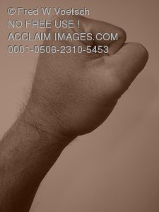 Stock Photo Clip Art of a Persons Fist