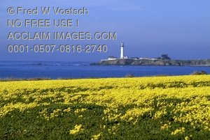 Clip Art Stock Photo of Pigeon Point Lighthouse