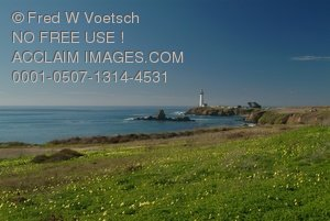 Stock Photo Clip Art of Pigeon Point Lighthouse
