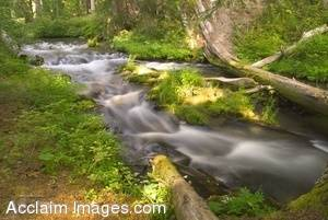 Stock Photo of Flowing Water Just Above National Creek Falls