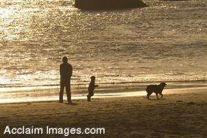 Stock Photo of a Man and a Boy With Their Dog On The Beach