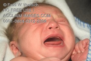 Crying Baby Stock Photo Clip Art Image