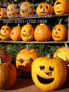 Clip Art Stock Photo of Rows of Jack O