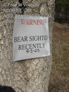 "Clip Art Stock Photo of ""Bear Sighted"" Sign in the Woods or Forest"