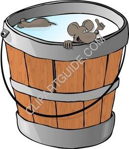 Two Mice In A Milk Bucket