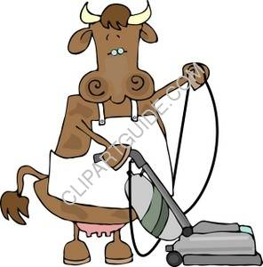 Cow Using A Vacuum