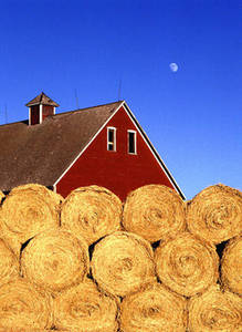 Clipart of Bales of Hay