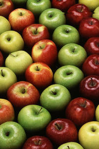 Free Conceptual Photo of Different Kinds of Apples