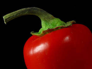 Free Photo of A Red Chili Pepper