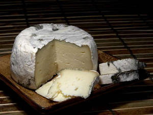 Free Photo of St. Pat's Cheese