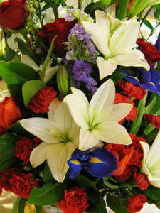 Free Photo of a Bouquet of Flowers