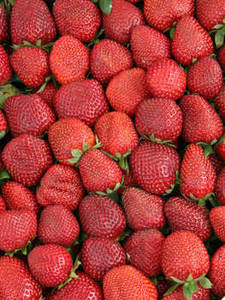 Free Photo of Strawberries