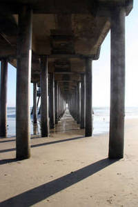 Free Photo of Pilings Under a Pier