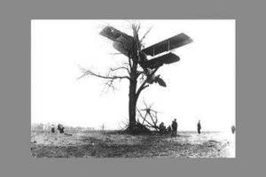 Free Black and White Photo of a Biplane in a Tree