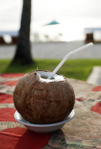 Free Picture of Whole Coconut With a Straw