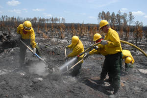 Free Picture of U. S. Army Soldiers Fighting Wildfire in Florida