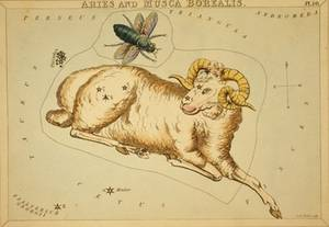 Free Illustration of Aries - Zodiac Sign - By Etcher Sidney Hall