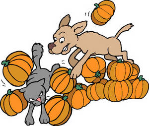 Free Clipart Picture of a Dog Chasing a Cat Through a Pile of Pumpkins