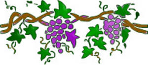 Free Clipart Picture of a Border of Grapes and Vines. Click Here to Get Free Images at Clipart Guide.com