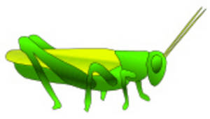 Free Clipart Picture of a Yellow and Green Grasshopper