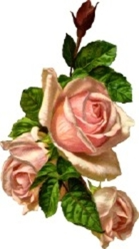 Vintage Roses Free Clip Art. Click Here to Get Free Images at Clipart Guide.com