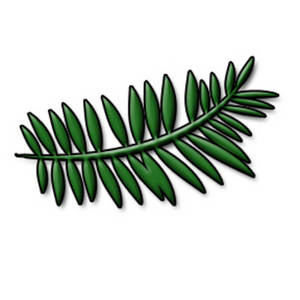 Free Clipart Picture of a Fern Leaf