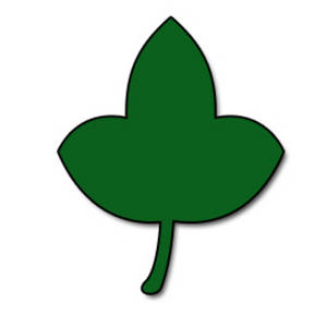 Free Clipart Picture of a Broad, Flat Leaf