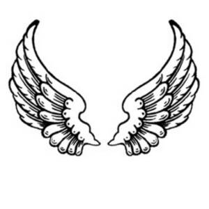 free clipart picture of feathered angel wings rh clipartguide com wings clipart for picsart wings clipart free