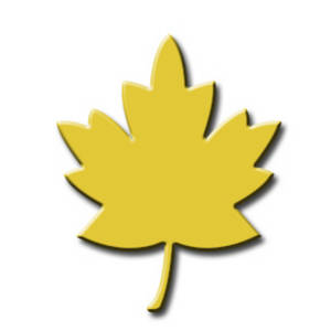 Free Clipart Picture of an Autumn Leaf
